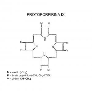 protoporfirina-ix